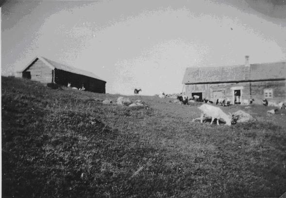 Prestlia på 1940-tallet