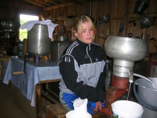 Etter melking må melka separeres. Her kommer det både fløte og skummet melk